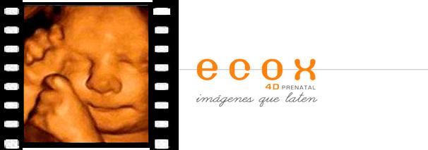 Ecox Murcia