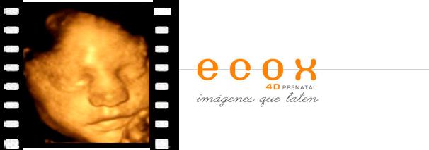 ecografías 3d y 4d