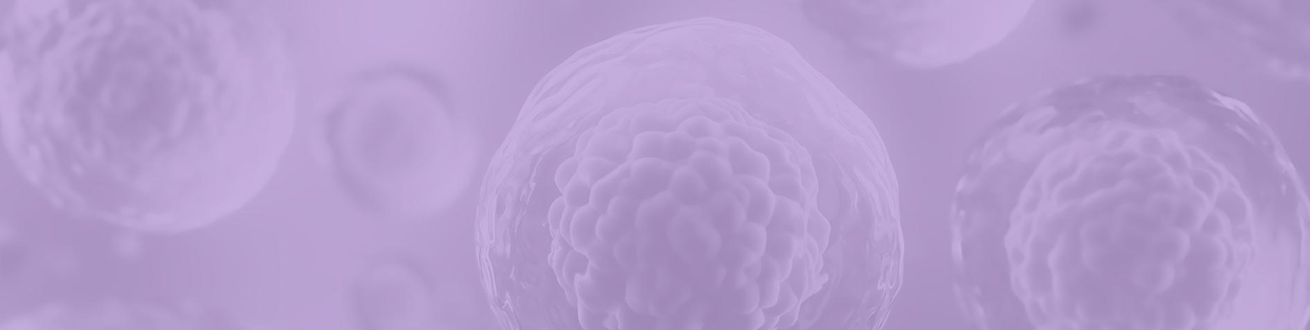 Vitrificación de embriones